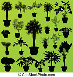 Exotic jungle bushes grass, reed, palm tree wild plants set...