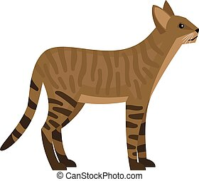 Exotic jungle cat. Cartoon beast of safari, aggressive animal of wildlife, vector illustration of hunting cat with striped skin isolated on white background