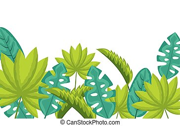 exotic monstera palm leaves tropical