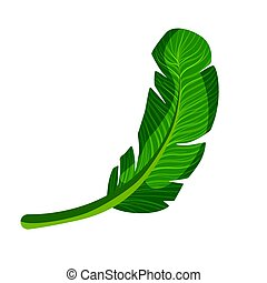 Exotic palm green leaf. Colorful cartoon vector Illustration...