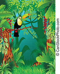 exotic tropical jungle - a toucan in exotic tropical forest