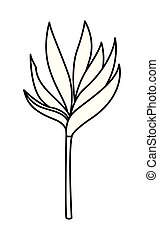 exotic tropical leaves icon cartoon in black and white