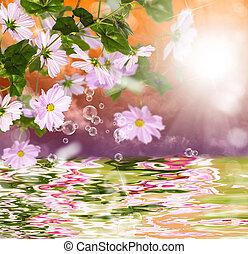 Exotic tropical sundown and water beautiful flower