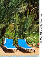 exoticas, área, recurso, 2, relaxamento, feriado