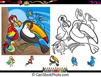exoticas, coloração, página, jogo, caricatura, pássaros