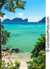 exoticas, dourado, água, areia, azure, praia