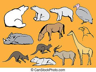 exoticas, linha, animais, desenho