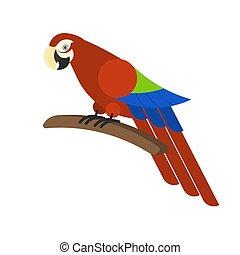 exoticas, parrot., macaw., tropicais, pássaro selvagem, vermelho