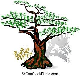 exoticas, sazonal, experiência., folhas, árvore, verde branco