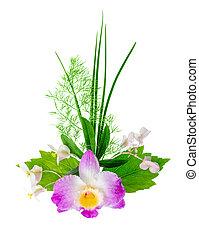 exotique, bouquet, isolé, backg, fleurs blanches, ...