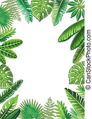 exotique, cadre, feuilles
