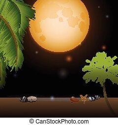 exotique, clair lune, fond