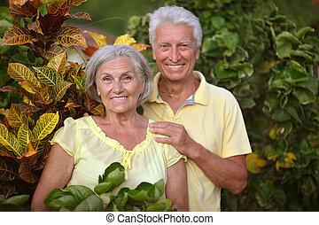 exotique, couple, jardin, personnes agées