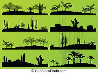 exotique, détaillé, plante, arbres, vecteur, paume, illustration, fond, collection, cactus, déserter paysage