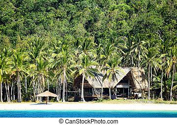 exotique, el, philippines, plage, nido