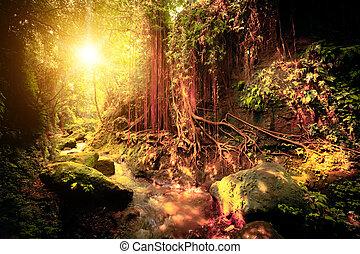 exotique, fantasme, couleurs, forêt, surréaliste