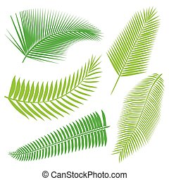 exotique, feuilles, collection, isoler, vector.
