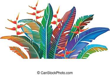 exotique, feuilles, coloré