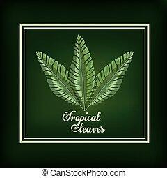 exotique, feuilles, conception