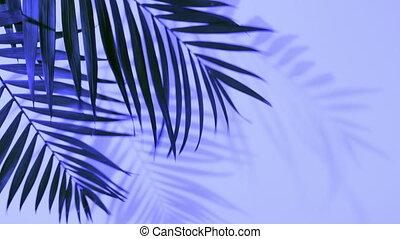 exotique, feuilles, gradient, holographic, paume, gras, ...