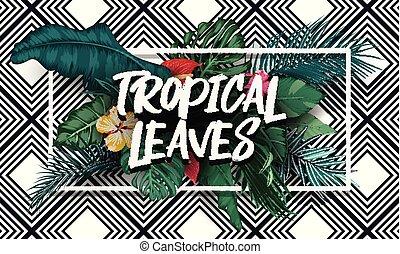 exotique, feuilles, rectangle, cadre, fond
