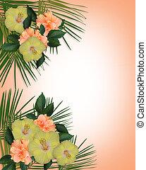 exotique, hibiscus, fleurs, frontière