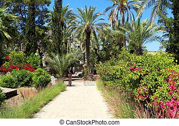 exotique, jardin