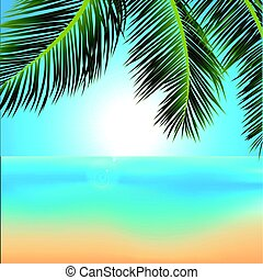 exotique, levers de soleil, paume, fond, arbres