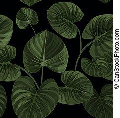 exotique, modèle, feuilles