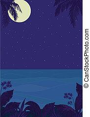 exotique, nuit, paysage, océan