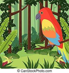 exotique, oiseau sauvage, perroquet, jungle