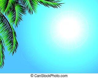 exotique, palmier, paysage, fond