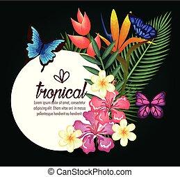exotique, papillons, fleurs, exotics