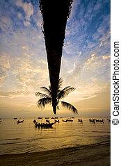 exotique, paume, bateaux, plage, coucher soleil
