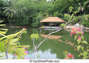 exotique, pavillon, lac