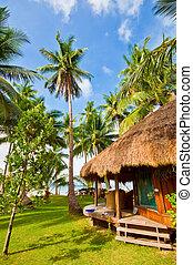 exotique, petite maison, plage