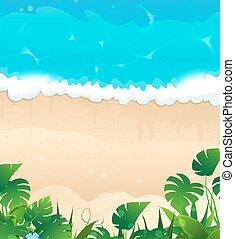 exotique, rivage, océan
