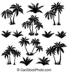 exotique, silhouettes, ensemble, palmiers