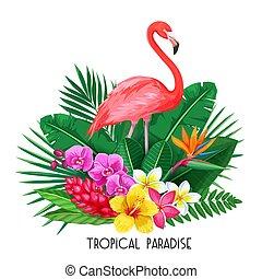 exotique, toucan, bannière