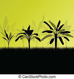 exotique, usines, détaillé, silhouette, arbre, illustration, plantation, vecteur, fond, banane, paysage