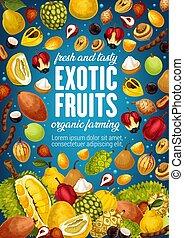 exotische , bauernhof, plakat, tropische früchte, wendekreis, markt