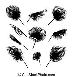 exotische , blad, bladeren, silhouette., vector, palm, set.