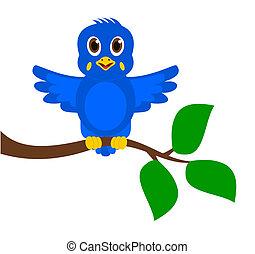 exotische , blauer vogel, zweig