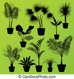 exotische , dschungel, büsche, gras, schilfgras, palme, wild, betriebe, satz, vektor, hintergrund, begriff, haus pflanzt, für, plakat