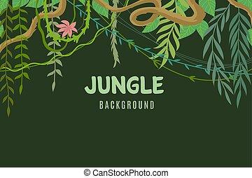 exotische , tierwelt, begriff, lina, frame., blätter, abenteuer, tropische , hintergrund., rainforest., vektor, landschaftsbild, vegetation, dschungel
