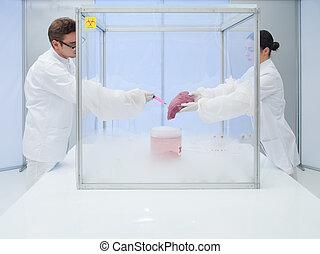 expérimenter, azote, laboratoire, liquide