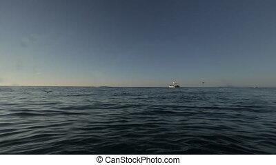 Expanse dark-blue sea water, Qld Island - Wide pan shot of...