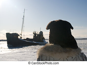 expedition - north pole expedition