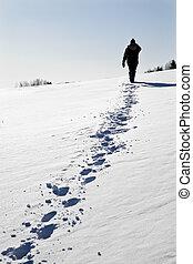 Expedition to the north - Expedition to the north - sunny...