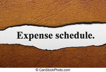 Expense schedule